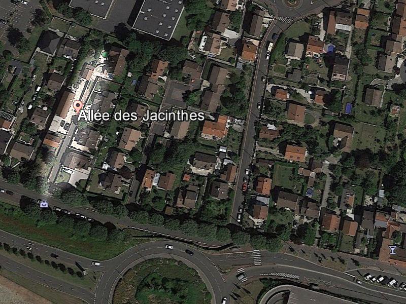 jacinthes_00-G.jpg