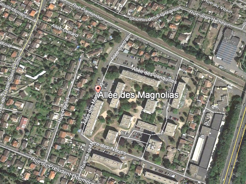 magnolia_00-G.jpg