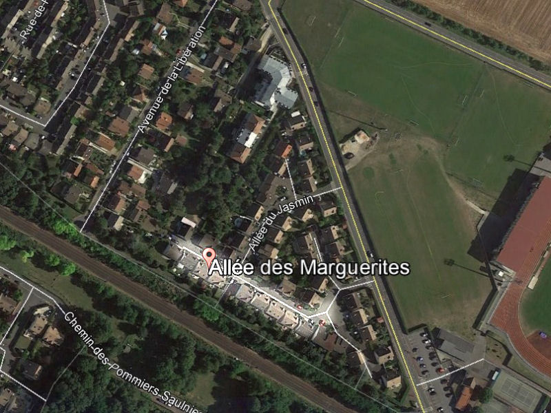 marguerites_00-G.jpg
